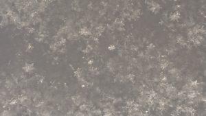 ゆきの結晶 雪 北海道むかわ町穂別の白樺樹皮 ハンドメイド工房 すりんぐ